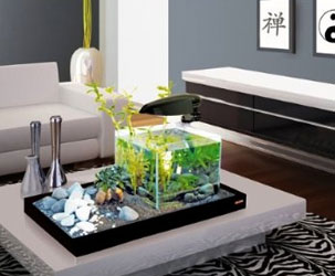 zengarten mit aquarium gl cklich pleite. Black Bedroom Furniture Sets. Home Design Ideas